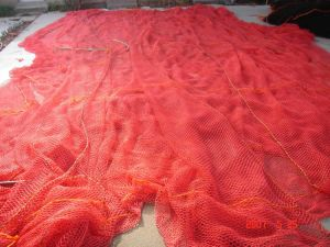 Nylon Fish Net pictures & photos