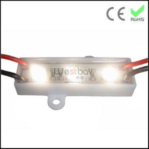 3PCS 5050 LED Module Plastic Base OEM Color 4500k
