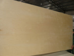 White Birch Plywood (BP-HT03006) pictures & photos