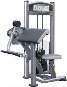 Arm Curl Strength Fitness Gym (IT9003)