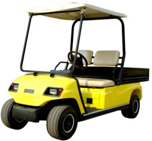 Supply 2 Seaters Electric Utility Vehicle pictures & photos