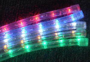 Neon Flex LED Rope Light (SRRLH-2W) pictures & photos