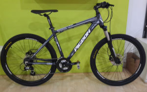 Conquer 620 High Class Alloy Mountain Bicycle (FP-MTB-A032) pictures & photos