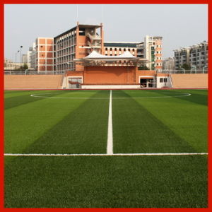 Natural Looking Artificial Grass for Sport Ground (50S15Y15G4)