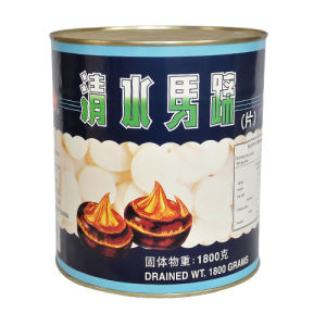 567g Best Chestnut Canned Water Chestnut pictures & photos