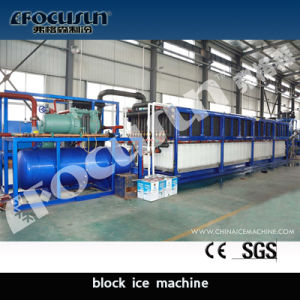 Easy Handle Block Ice Plant pictures & photos