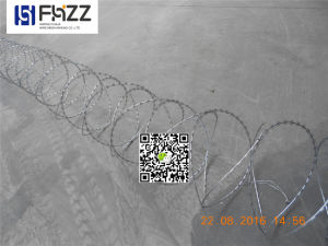Security Protected Concertina Razor Wire pictures & photos