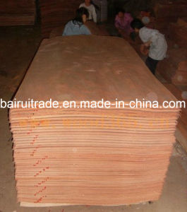 0.3mm Rotary Cut Wood Veneer for Making Plywood pictures & photos