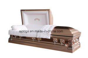 Copper with Copper Brushed Coffin pictures & photos