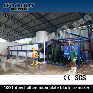 Focusun 100t Direct System Block Ice Maker pictures & photos