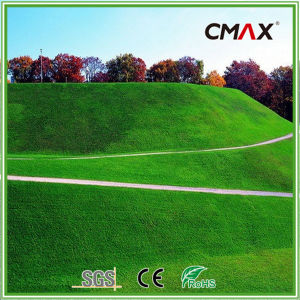 50mm Artificial Grass for Garden Leisure Grass pictures & photos