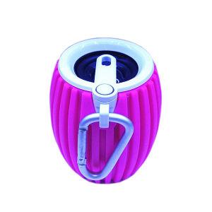 Bluetooth Mini Speaker with FM Radio (HQ-BTS008) pictures & photos