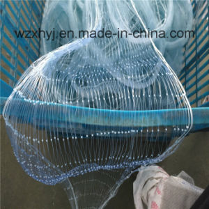 "0.50mmx3 1/8""X60mdx200yds Lengthway Nylon Monofilament Fishing Net pictures & photos"