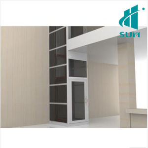 Luxury Home Elevator with Competitive Price Villa House Elevator Sum-Elevator pictures & photos