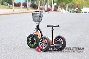 500W 48V 20ah Roadpet Ginger Mypet Zappy 3 Wheel Electric Scooter pictures & photos