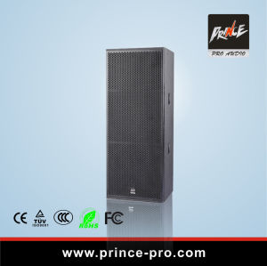 Double 15 Inch Speaker Big Power Sound System pictures & photos
