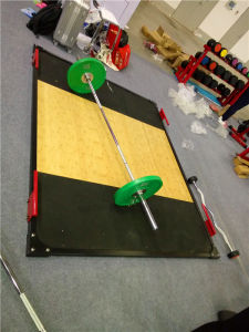 Fitness Equipment/Gym Equipment/Olympic Weight Lifting Platform pictures & photos