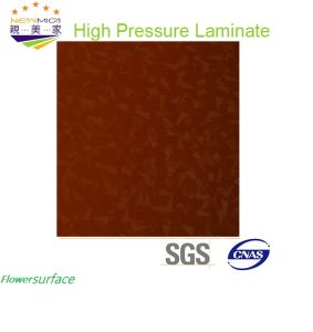 High Gloss Flower Fiish HPL Sheet/HPL Panel pictures & photos