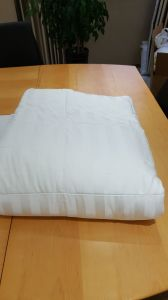Bamboo Cover and Bamboo Filling Comforter pictures & photos