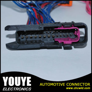2016 High Quality Factory Car Alarm Wire Harness pictures & photos