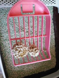 Clumping and Odor Control Tofu Cat Litter pictures & photos