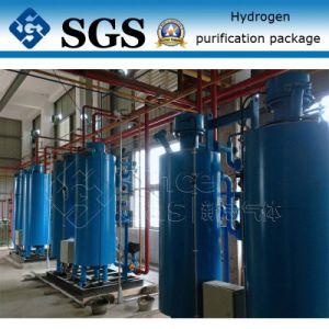 Nitrogen Purification System (NP-C) pictures & photos