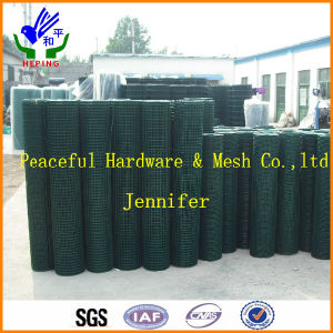 Hot Sale 1′′x1′′ Welded Wire Mesh pictures & photos