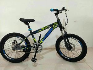 "20"" Mountain Bicycle MTB, Children Mountain Bicycle, Children Bicycle pictures & photos"