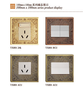 BS Standard Brass Wall Power Socket with Patterns pictures & photos