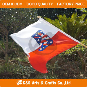 Promotion Polyester Hand Flag/Banner pictures & photos