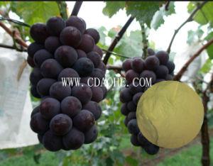 Grape Specail Organic Fertilizer pictures & photos