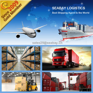 Porfessional Shipping Logistics Service From Shenzhen/Shanghai/Ningbo/Guangzhou to India pictures & photos