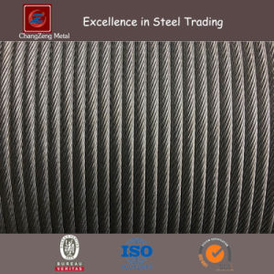 Zinc Coated Steel Wire Strand for Anti-Vibration Hammer (CZ-W58) pictures & photos