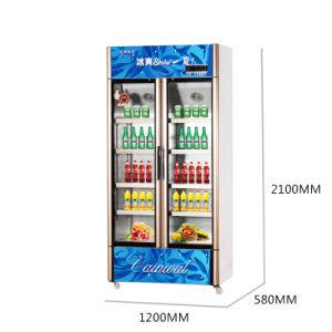 661L Vertical Below Unit Opening Multi-Door Display Refrigerator pictures & photos