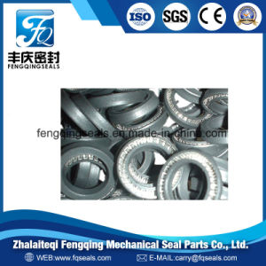 PTFE Hydraulic Shaft Stainless Steel Spring Energized Seal pictures & photos