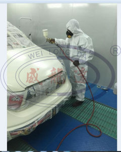 Auto Car Paint Booth Wld6200 pictures & photos