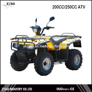 200cc Air Cooled/Water Cooled ATV Quad, 250cc Farm ATV with High Quality China ATV Hot Selling pictures & photos