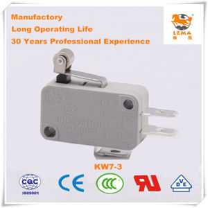Lema 16A Grey Kw7-3 Micro Switch pictures & photos