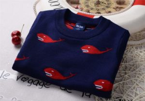 T1230 Hot Sale Autumn High Quality 100% Cotton Double-Layer Thick Baby & Kids Boy Whales Sweater Pullover Knitted Shirt Long Sleeve Wear pictures & photos