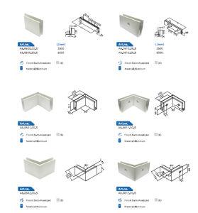 Aluminum Channel Glass Railing pictures & photos