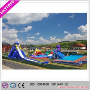 Giant Ground Inflatable Pool Water Park for Sale (Lilytoys-wp-045)