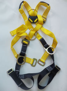 ANSI Full Body Harness (JE146026) pictures & photos