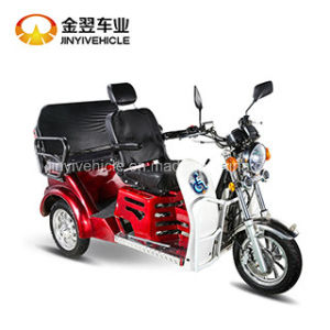 125cc Two Passenger Seats Disabled Trike Tricycle pictures & photos