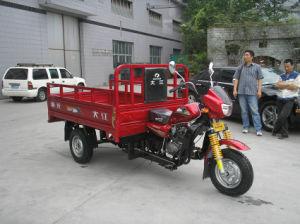 Tough Mini Cargo Three Wheel Motor Truck pictures & photos