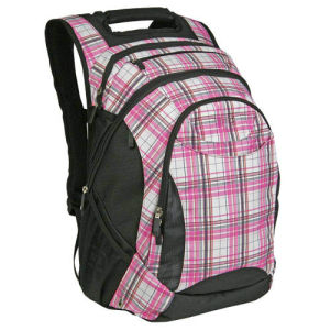 Leisure Student Computer Backpack Business Fashion Bag pictures & photos