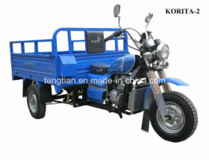 3 Cargo and Passenager Tricycle pictures & photos