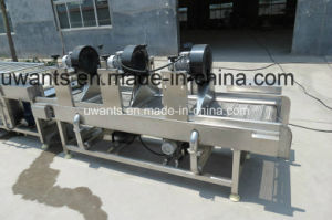 High Quality Leaf Vegetable Bubble Washing Machine pictures & photos