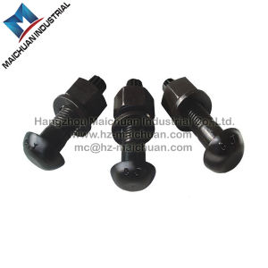 High Strength Torsional Shear Bolts pictures & photos