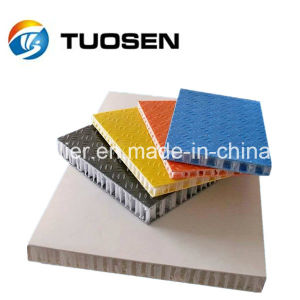 Anti-Slip Scaffold Panel FRP PP Honeycomb Panel pictures & photos