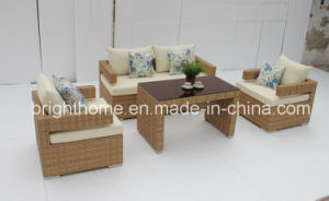 2015 New Design Outdoor Sofa Set Wicker Furniture/Outdoor Leisure Furniture (BP-8008) pictures & photos